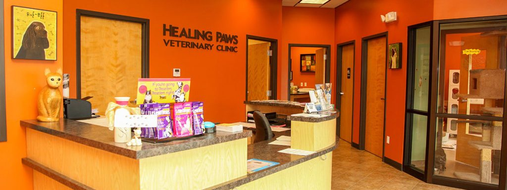 healing-paws-lobby